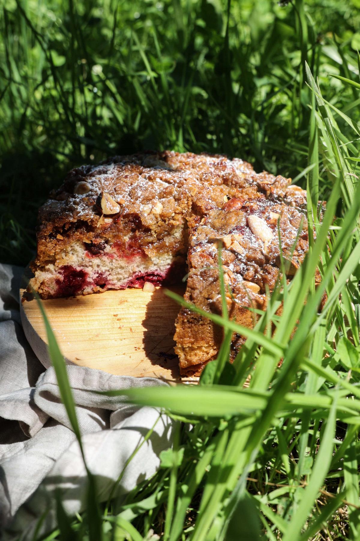 Kuchen  Kirschkuchen  Streusel  Picknick  backen  Rezept